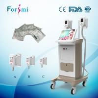 Wholesale Best Max -15 celsius Cold lipolysis machine freeze belly fat away slimming beauty machine from china suppliers