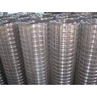 "Wholesale Hot - dip galvanized welded wire mesh, 1/2"" x 1 / 2"" for Fence,Cages from china suppliers"