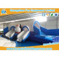 Quality Frozen Inflatable Amusement Park For Summer , Inflatable Bouncer And Slide For Kids for sale