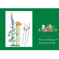 """Single Grow Garden Plant Supports / Spiral Plant Support 4"""" Z - Rings"""