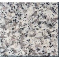 Wholesale Sardo Grey Granite G623 Haicang White from china suppliers