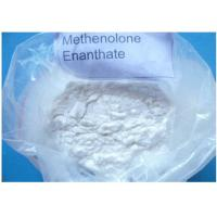 Wholesale CAS 303-42-4 Highly Effective Anabolic Steroid Powder Methenolone Enanthate / Primobolan from china suppliers