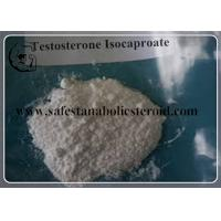 Wholesale White Crystalline Powder Testosterone Isocaproate CAS 15262-86-9 from china suppliers