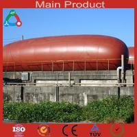 Wholesale New energy excellent large food waste treatment biogas plant from china suppliers