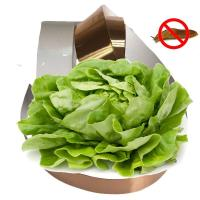 Wholesale ATC6028 Aaron Slug Copper Tape Home Depot Control Snails in Vegetable Garden Manufacturer/Supplier/Factory from china suppliers