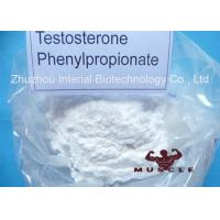 Wholesale Medicinal Fat Burning Steroids Testosterone Propionate For Women CAS 1255-49-8 from china suppliers