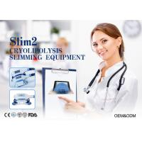 Wholesale Cryolipolysis Vacuum Slimming Machine For Body Sculpture With 2 Handpieces from china suppliers