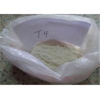 Wholesale Lose Weight Pharmaceutical Raw Materials 51-48-9 L - Thyroxine T4 776.87 MW from china suppliers