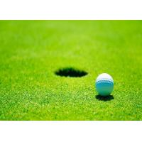 Wholesale Real Looking Office / Residential Indoor Golf Putting Mat Waterproof Artificial Grass from china suppliers