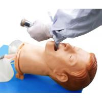 Fully Functional Airway Training Manikins with Color Liquid Crystal Display