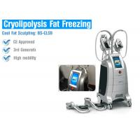 Wholesale Safety Cryolipolysis Fat Loss Machines , Fat Freezing Body Contouring Machine from china suppliers