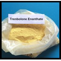 Wholesale Trenbolone Enanthate Powder Muscle Gain Steroid Tren E / Parabola For Fat Loss from china suppliers