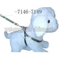 Wholesale dog leash and dog thoracodorsal,Printing dog leashes(AF7146) from china suppliers
