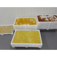 Wholesale Pharmaceutical medicine Plastic Drying Trays with holes for good drying from china suppliers
