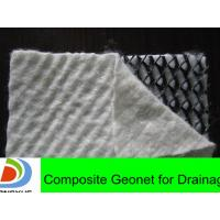 Wholesale road construction materials geonet for drainage from china suppliers