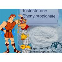 Wholesale No Side Effects Raw Steroid Powder Testosterone Phenylpropionate for Lean Muscle from china suppliers