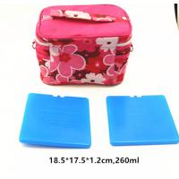 Wholesale FDA Approved 260Ml Thermal Hard Block Ultra Thin Ice Pack For Cooler Bag from china suppliers