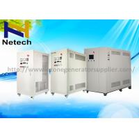 Wholesale 60g 80g 100g Oxygen Feed Ozone Generator Water Purification For Bottled Water Plant from china suppliers