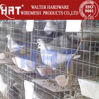 Wholesale Cages for carrier pigeons from china suppliers