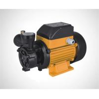 Wholesale Vortex pump/Peripheral pump/Surface pump DB125 from china suppliers