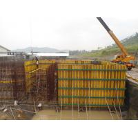 Wholesale OEM ODM Arced formwork and column formwork systems for Water Tower from china suppliers