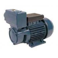 Wholesale TPS -70 Series Domestic Electric Motor Water Pump 0.75HP/0.55KW from china suppliers