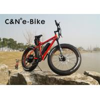 Wholesale 1000W Power Electric Fat Tire Sand Bike With Electric Motor Environment Friendly from china suppliers