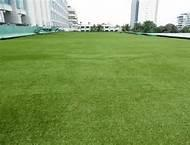 Wholesale 3 / 8inch forever green artificial grass roof for Landscaping , playground from china suppliers