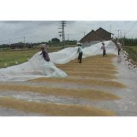 Wholesale biodegradable pp spunbond agriculture nonwoven from china suppliers