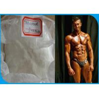 Wholesale CAS number 15262-86-9 Pre Made Steroids Testosterone Isocaproate Powder from china suppliers