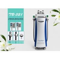 Wholesale Five Handle Cryolipolysis Fat Freezing Fat Removal Slimming Multifunctional Machine from china suppliers