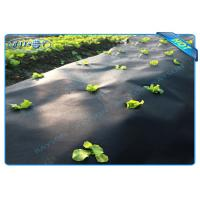 Wholesale Black Garden Weed Control Fabric For MaintainTemperature To Benefit Healthy Growth from china suppliers