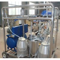 Quality 550l/Min Vacuum Pump Capacity Goat Milking Machine , Cow Milking Equipment for sale
