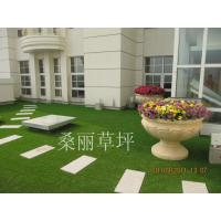 Wholesale Natural Appearance Indoor Artificial Grass Rug , 2200Dtex 10mm from china suppliers