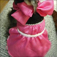 Wholesale Large / Small Formal Cute Princess Customized Dog Dresses with Bowknot from china suppliers