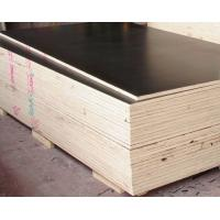 Buy cheap cheap price birch lowes 18mm marine plywood for concrete formwork laminated film faced plywood from wholesalers