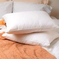 Buy cheap Cotton Polyester Pillow from wholesalers