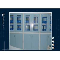 Wholesale Cleanroom Locking Storage Cabinet , Ventilated Chemical Storage Cabinets Customization Available from china suppliers