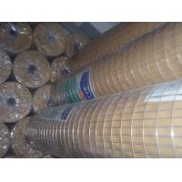 Wholesale Welded Wire Mesh Galvanized Square Wire Mesh Hexagonal Wire Mesh  from china suppliers