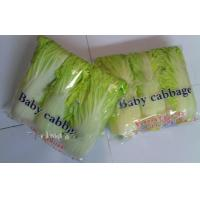Wholesale Long White Chinese Napa Cabbage Contains Folic Acid With Smooth Surface For Preserve, Delicate quality, Fleshy sweet from china suppliers