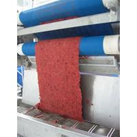 Wholesale High Pressure Automatic Belt Fruit Juice Press Machine Easy Cleaning CE from china suppliers