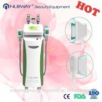 Wholesale Effective Fat Freezing Lose Weight Cryolipolysis Device Body Cryolipolysis Slimming Machin from china suppliers