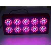 Wholesale Apollo 10 LED Grow Light AC100~240V 700mA Color Red/Blue from china suppliers