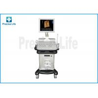 Wholesale Hospital PL-2200 Color Doppler Medical Ultrasound Machine / Equipment from china suppliers