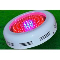 Wholesale 50Hz RGB 90W Round LED Grow Lights Energy Saving 5000K CRI 80 from china suppliers