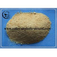 Wholesale 99% Light Yellow Trenbolone Base Muscle Bodybuilding Steroid Powder CAS 10161-33-8 from china suppliers