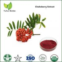 Wholesale Antioxident aronia extract/choke berry extract,Choke Cherry Extract,Choke Cherry powder from china suppliers