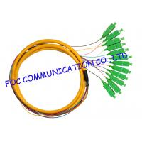 Wholesale Distribution Fan Out Optical Fiber Pigtail For FTTX , APC sc pigtail single mode12 Cores from china suppliers