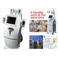 Wholesale Vertical Cryolipolysis Body Slimming Machine , Safe Fat Burning Equipment from china suppliers