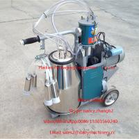 Quality Electric Motor Piston Mobile Milking Machine Dairy Milking Equipment for sale